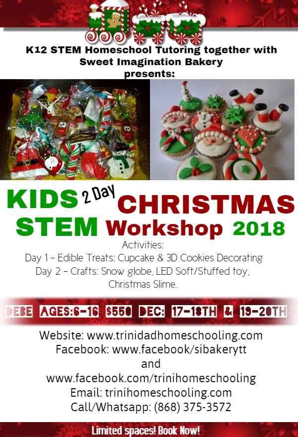 STEM Christmas Workshop 2018 SOFT STUFFED TOY